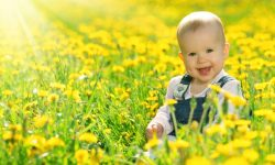 Baby in field (Large)