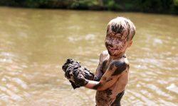 Muddy hands (Large)