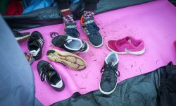 Sports Shoes (Large)